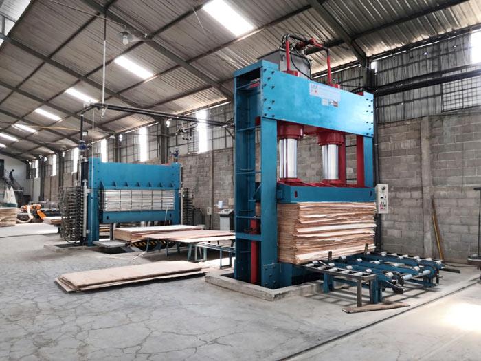 Mesin press dingin dari kayu lapis